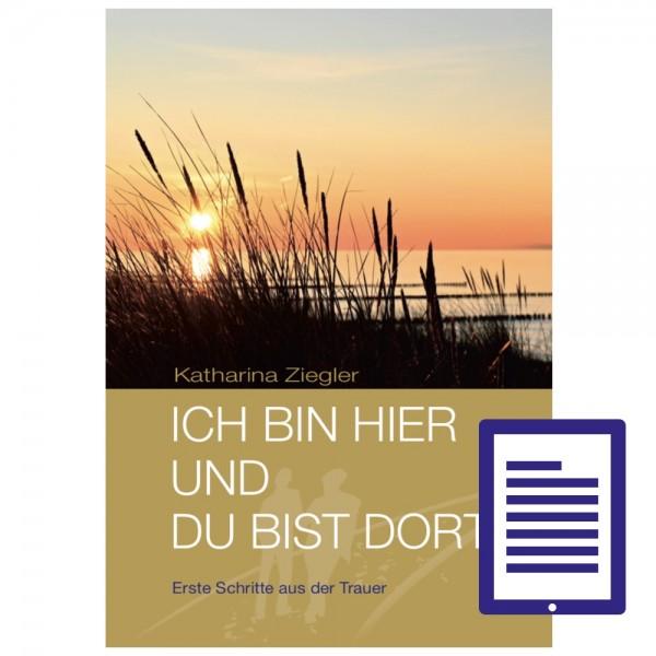 """""""Ich bin hier und du bist dort"""" – E-Book"""