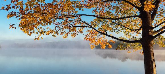 Des Herbstes Melancholie