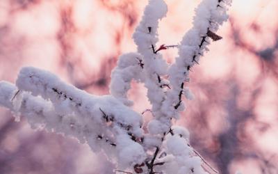 Aprilwetter – Kapriolen der Natur